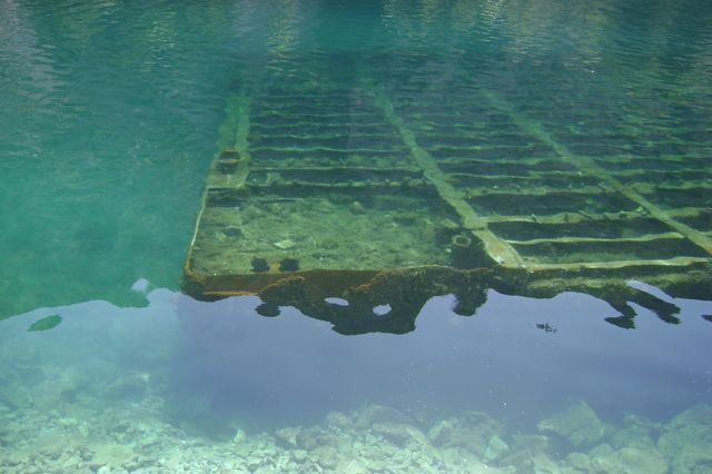 Zdjęcia: Adriatyk, Pod wodą, CHORWACJA