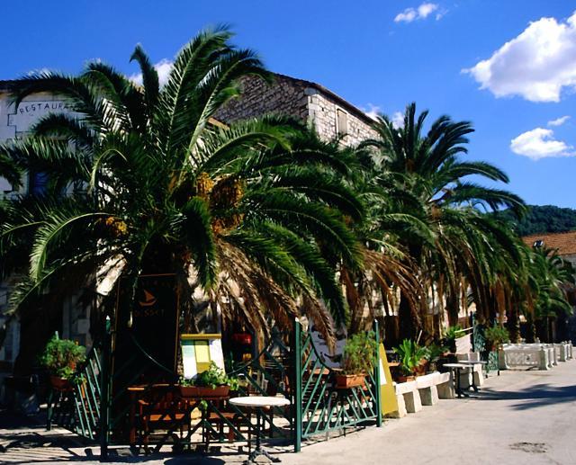 Zdj�cia: wyspa Hvar, Dalmacja, Stari Grad, CHORWACJA