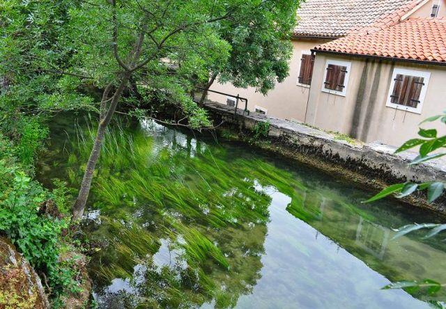 Zdjęcia: Park Narodowy Krk Skradin, Dalmacja Środkowa, W rzece , CHORWACJA