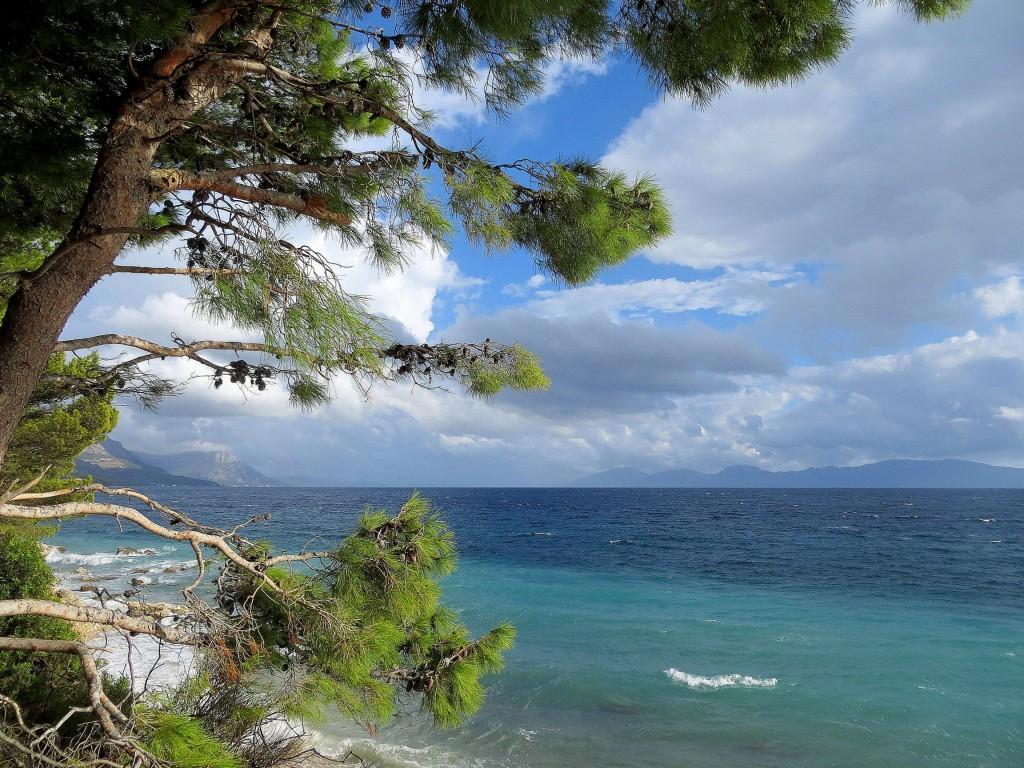Zdjęcia: Blato, Riwiera Makarska, zielono, szmaragdowo i niebiesko..., CHORWACJA