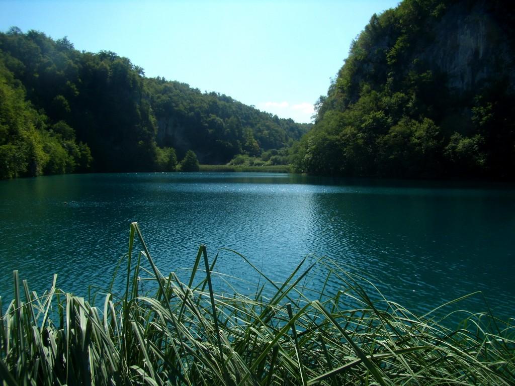 Zdjęcia:  Park Narodowy, Jezioro Milanovac, zza traw, CHORWACJA