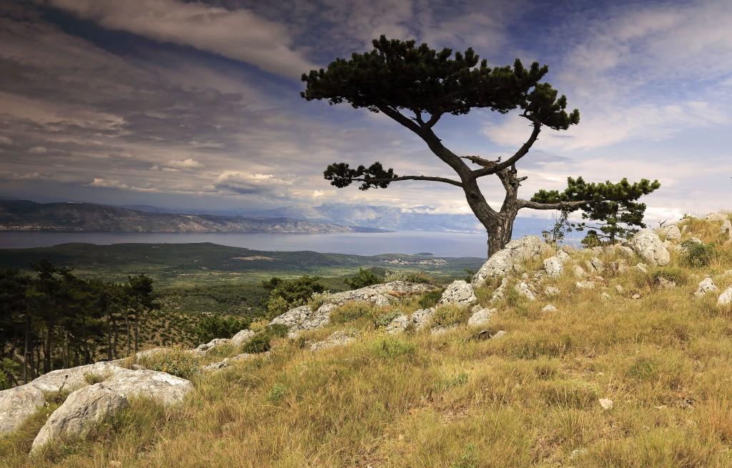 Zdjęcia: góra św. Nikola ( 626 metrów n. p .m), Środkowej Dalmacji -Hvar, Na szczyt  św. Nikola , CHORWACJA