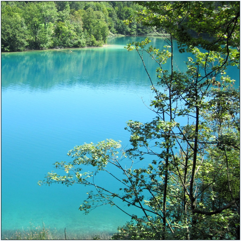 Zdjęcia: Park Narodowy Jezior Plitwickich, środkowa Chorwacja, niebiesko i zielono..., CHORWACJA