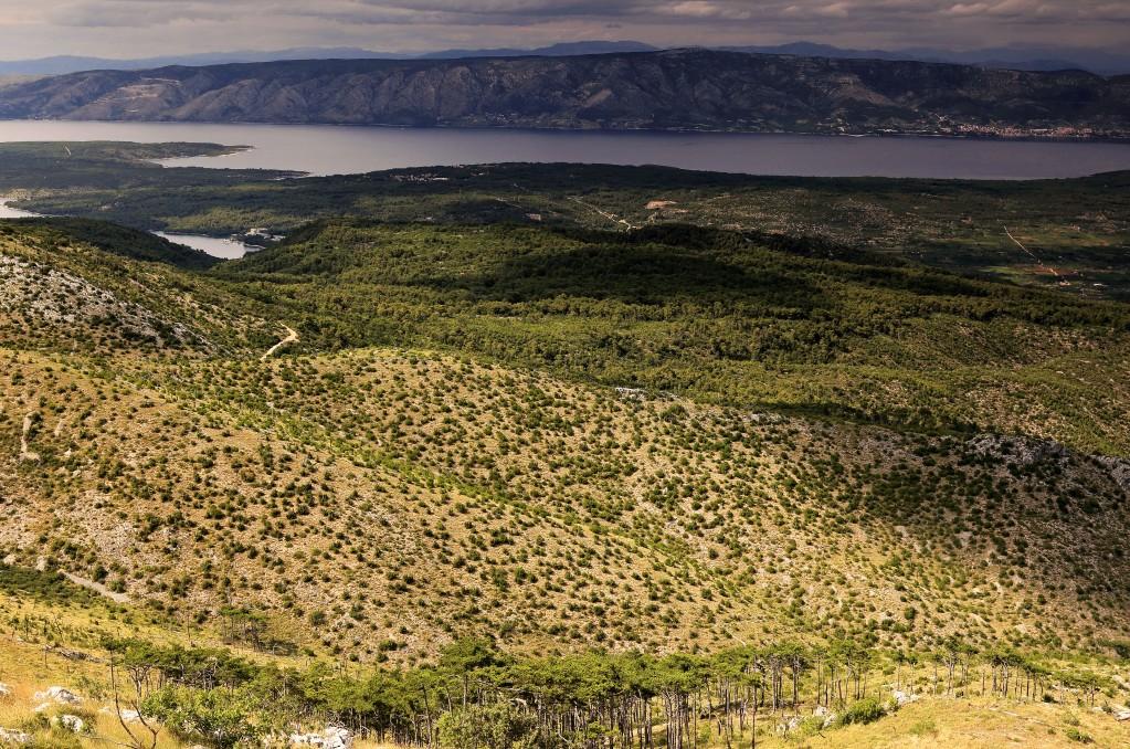 Zdjęcia: Hvar, Środkowej Dalmacji -Hvar, Widok ze szczytu Sveti Nikola , CHORWACJA
