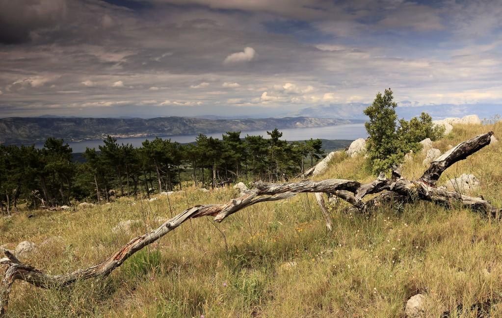 Zdjęcia: Góra św. Nikola ( 626 -HVAR, Środkowej Dalmacji -Hvar, Widok z  góry św. Nikola , CHORWACJA