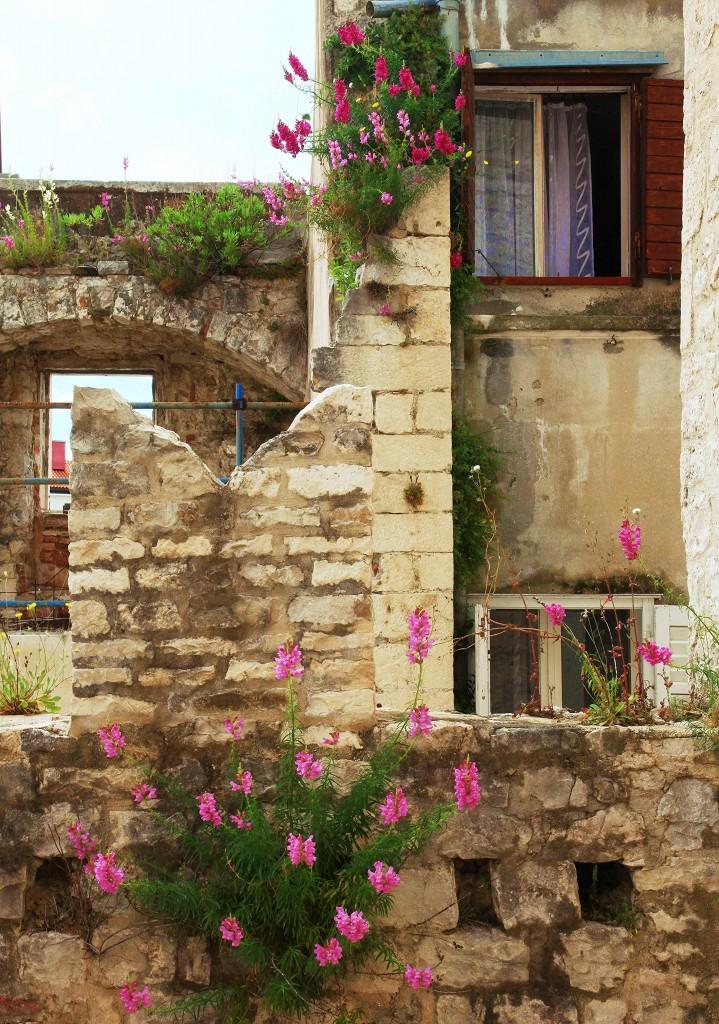 Zdjęcia: Split, Dalmacja, Siła przetrwania, CHORWACJA