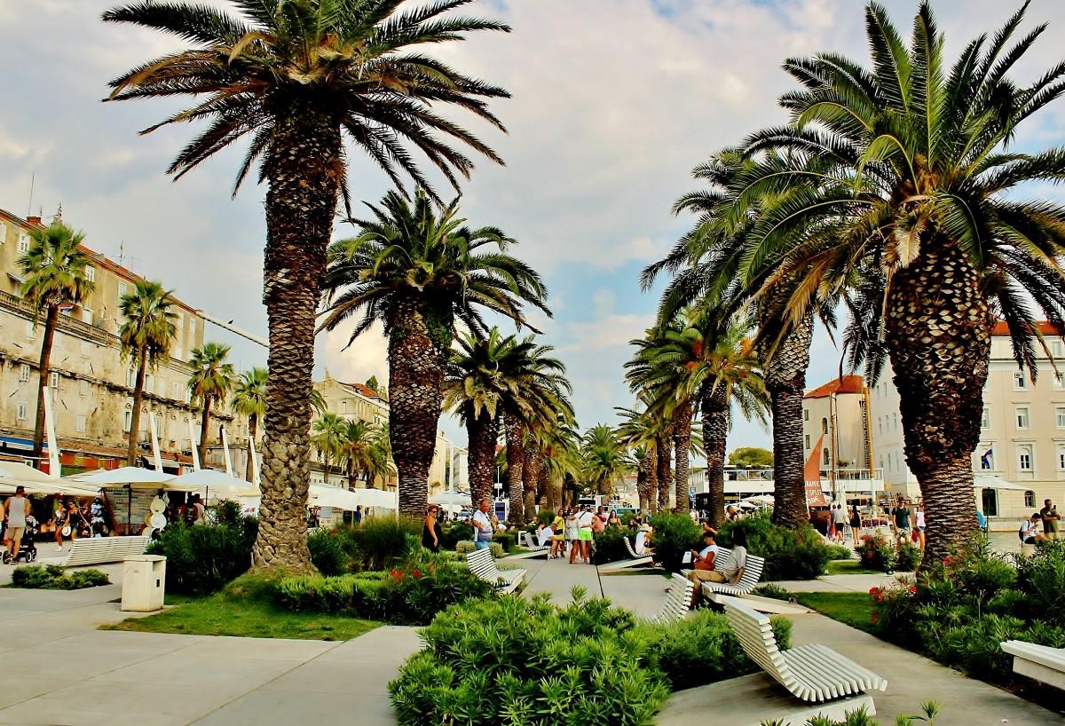 Zdjęcia: Split, Dalmacja, Pod palemkami, CHORWACJA