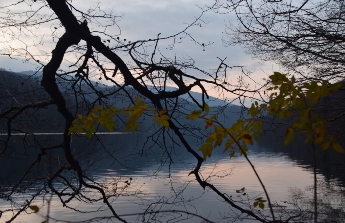 Zdjęcia: Park Narodowy Plitwickie Jeziora, Środkowa Chorwacja, Żółte liście, CHORWACJA