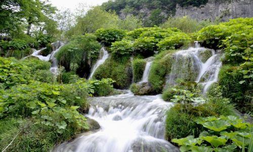 Zdjęcie CHORWACJA / Kvarner / Park Narodowy Plitvickie Jeziora / Kaskady w Plitvicach