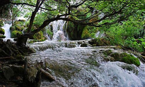 Zdjecie CHORWACJA / -Dalmacja / Plitvice / Chorwackie Klimaty