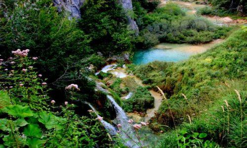 Zdjęcie CHORWACJA / okolice Zagrzebia / plitvice / Kolorowe jeziorko 1