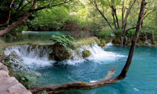 CHORWACJA / środkowa Chorwacja / Park Narodowy Jezior Plitwickich / spacerując wśród kaskad i zieleni