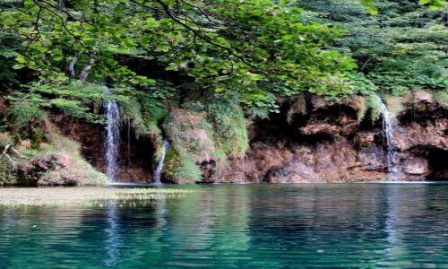 Zdjęcie CHORWACJA / Chorwacja Środkowa / Park Narodowy Jezior Plitwickich / spacerując wśród kaskad i zieleni