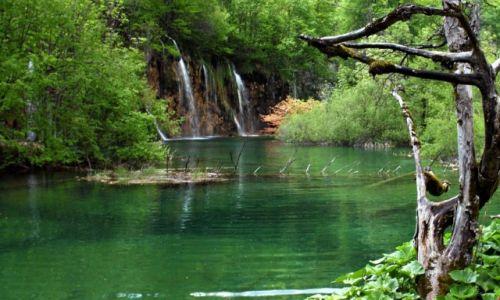 Zdjecie CHORWACJA / Wschodnia granica z Bośnią i Hercegowiną. / Jeziora Plitwickie / Park Narodowy Jeziora Plitwickie