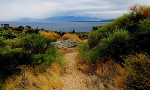 Zdjęcie CHORWACJA / Riviera Makarska / w górę Biokovo / mglisty poranek...