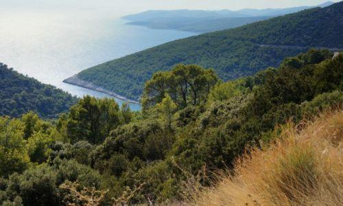 Zdjecie CHORWACJA / Korčula / Pupnatska Luka - z góry / wciąż tu stoję i patrzę...