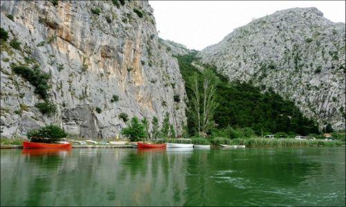 Zdjecie CHORWACJA / Dalmacja / Cetina / Rzeka Cetina