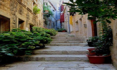Zdjęcie CHORWACJA / południowa Dalmacja / Korčula na Korčuli / w wąskiej uliczce...