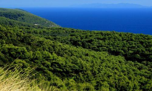 Zdjecie CHORWACJA / Korčula / w pobliżu zatoki Pupnatska Luka / zieleń i błękit...