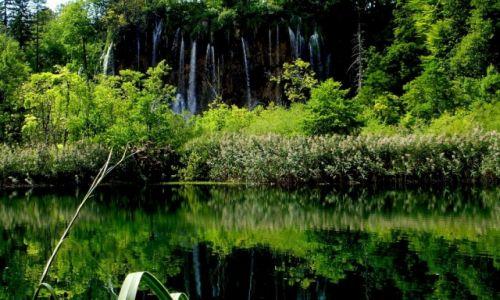 Zdjecie CHORWACJA / środkowa Chorwacja / Park Narodowy Jezior Plitwickich / w krainie jezior...