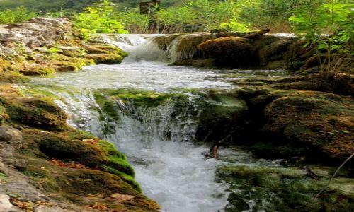 Zdjecie CHORWACJA / środkowa Chorwacja / Park Narodowy Jezior Plitwickich / świat jest taki piękny...