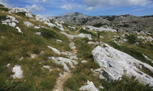 Zdjęcie CHORWACJA / Makarska / Park Przyrodniczy Biokovo / Na górę Św. Jerzego (Sveti Jure – 1762 m n.p.m.)