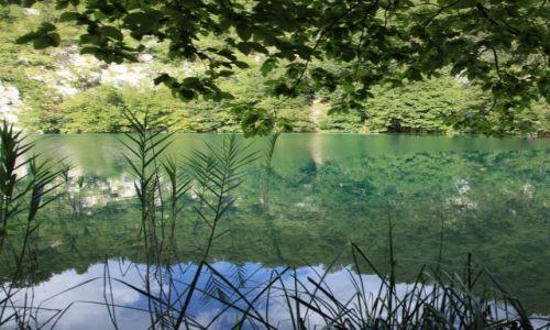 Zdjęcie CHORWACJA / Żupanja Lichicko-Senjska / Park Narodowy Jezior Pitwickich / Jeziora Pitwickie