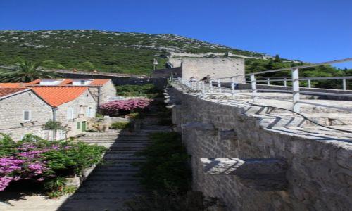 Zdjęcie CHORWACJA / Półwysep Pelješac  / Ston / Średniowieczne mury miejskie z czasów Republiki Dubrownickiej