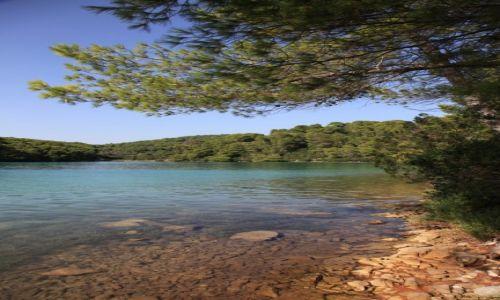 Zdjęcie CHORWACJA / Archipelag dubrownicki / Wyspa Mljet / Całkiem nie mała plaża nad Wielkim Jeziorem