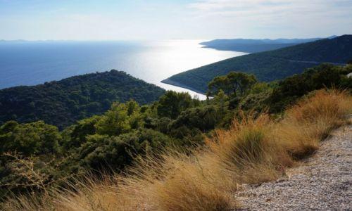 Zdjęcie CHORWACJA / Dalmacja południowa-Korčula / Pupnatska Luka / ku słońcu...