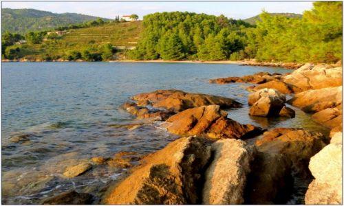 Zdjęcie CHORWACJA / Pelješac / za Žuljaną / brzegiem ciepłego morza...