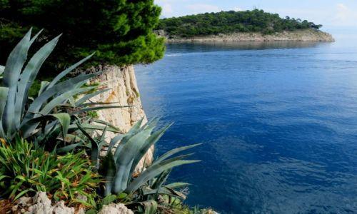 Zdjęcie CHORWACJA / Dalmacja / Makarska / klifowe wybrzeże...