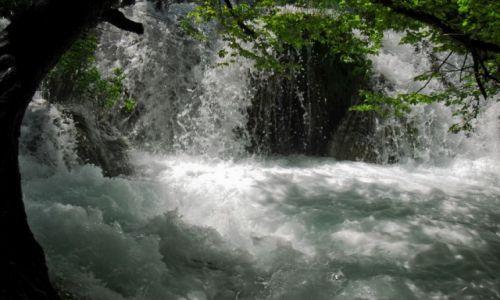 Zdjęcie CHORWACJA / Pasmo Mała Kapela / Plitwickie Jeziora / Kilka kropel wody