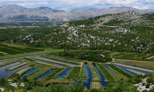 CHORWACJA / Dalmacja / delta Neretwy / zielona dolina...