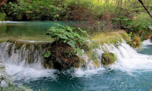 Zdjęcie CHORWACJA / środkowa Chorwacja / Park Narodowy Jezior Plitwickich / wokół zieleń i szumiące strugi...