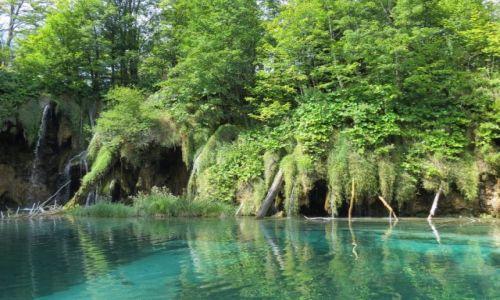 Zdjęcie CHORWACJA / środkowa Chorwacja / Park Narodowy Jezior Plitwickich / przyjemne wspomnienie...