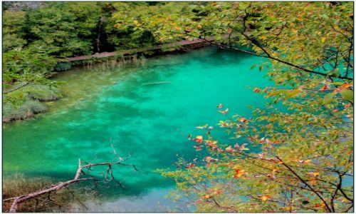Zdjecie CHORWACJA / środkowa Chorwacja / Park Narodowy Jezior Plitwickich / szmaragdowo...
