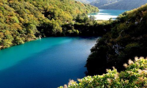 Zdjęcie CHORWACJA / środkowa Chorwacja / Park Narodowy Jezior Plitwickich / zachwycają kolorami...
