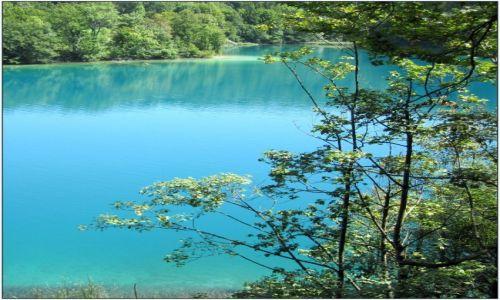 Zdjecie CHORWACJA / środkowa Chorwacja / Park Narodowy Jezior Plitwickich / niebiesko i zielono...