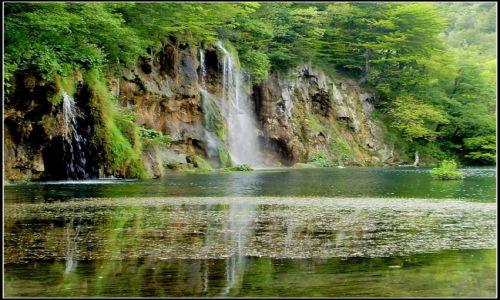 Zdjecie CHORWACJA / środkowa Chorwacja / Park Narodowy Jezior Plitwickich / zieleń i blask...