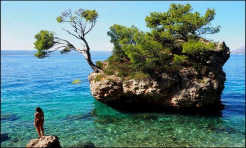 Zdjecie CHORWACJA / Riviera Makarska / Brela / Punta Rata...