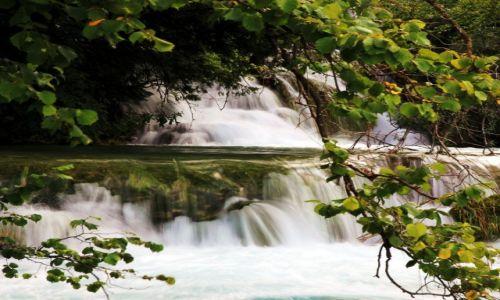 Zdjęcie CHORWACJA / Żupanja Licko-Senjska / Park Narodowy Jezior Pitwickich / Podglądanie