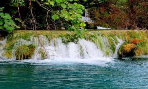 Zdjecie CHORWACJA / środkowa Chorwacja / Park Narodowy Jezior Plitwickich / wrześniowe barwy...