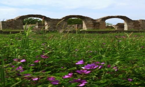 CHORWACJA / Split / Solin / Ruiny amfiteatru rzymskiego Salonae