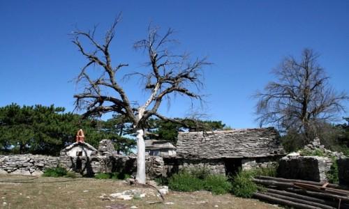 Zdjęcie CHORWACJA / Dalmacja / Wyspa Brač / Opuszczona wioska