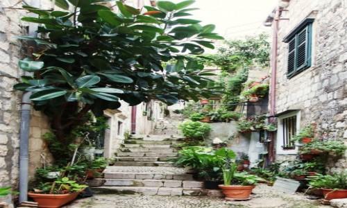 Zdjęcie CHORWACJA / Południowa Dalmacja / Dubrovnik / Uliczka ze schodami