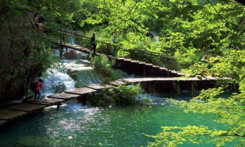 Zdjęcie CHORWACJA /  Żupanja Licko-Senijska / Park Narodowy Jezior Pitwickich  / Na spotkanie z żywiołem