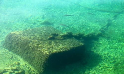 Zdjęcie CHORWACJA / nad Adriatykiem / różne / migawki z Chorwacji.