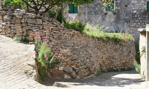 Zdjęcie CHORWACJA / Dalmacja / Wyspa Brač / Kamienne ogrodzenie podwórka