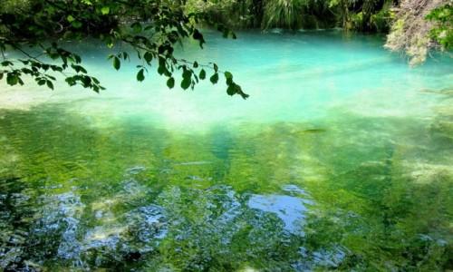 Zdjecie CHORWACJA / środkowa Chorwacja / Park Narodowy Jezior Plitwickich / jeden dzień w Plitwicach....